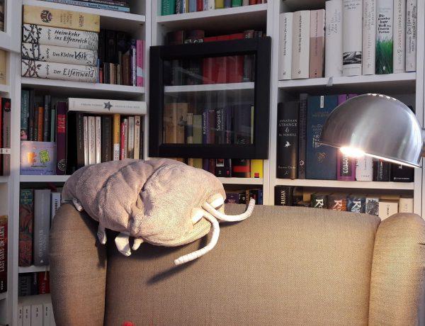 Booknappings Bücherregale davor ein Lesesessel