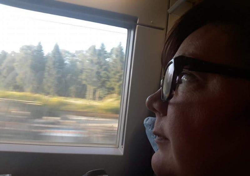 Booknapping im fahrenden Zug mit Blick nach draußen