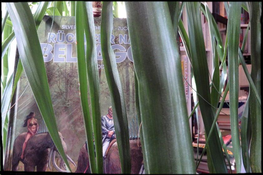 Comic steht versteckt hinter Palmenblättern, im Hintergrund Bücherstapel