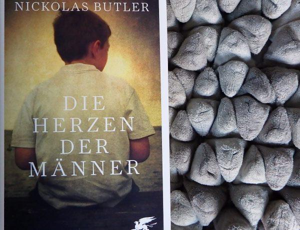 Die Herzen der Männer Titelbild. Buch auf einem Kissen in grau