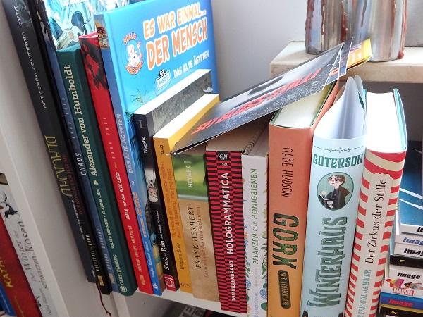 Lesequeue - mehrere Bücher und Comics nebeneinander auf einem Regal