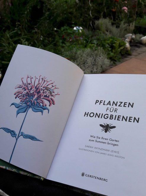 Pflanzen für Honigbienen mit Illustration in pastell