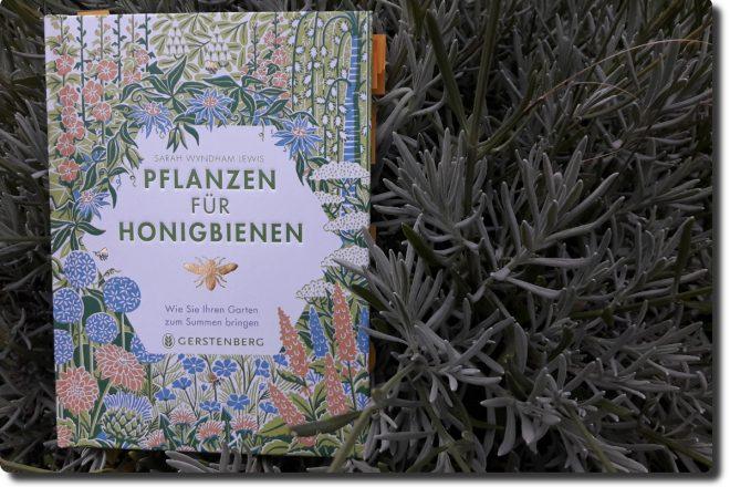 Buch in einem Lavendelstrauch