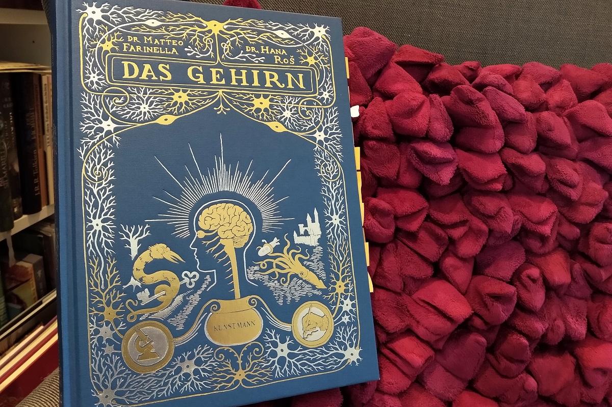Das Gehirn Titelbild - Buch vor einem roten Kissen