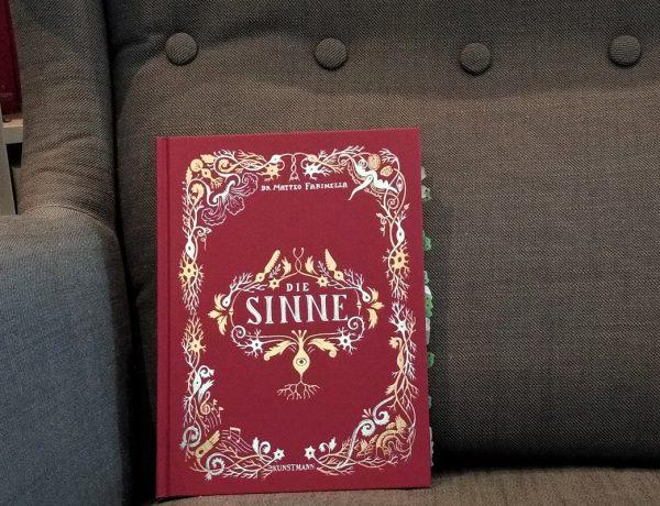 Rotes Buch mit goldenen Intarsien auf grauem Sessel