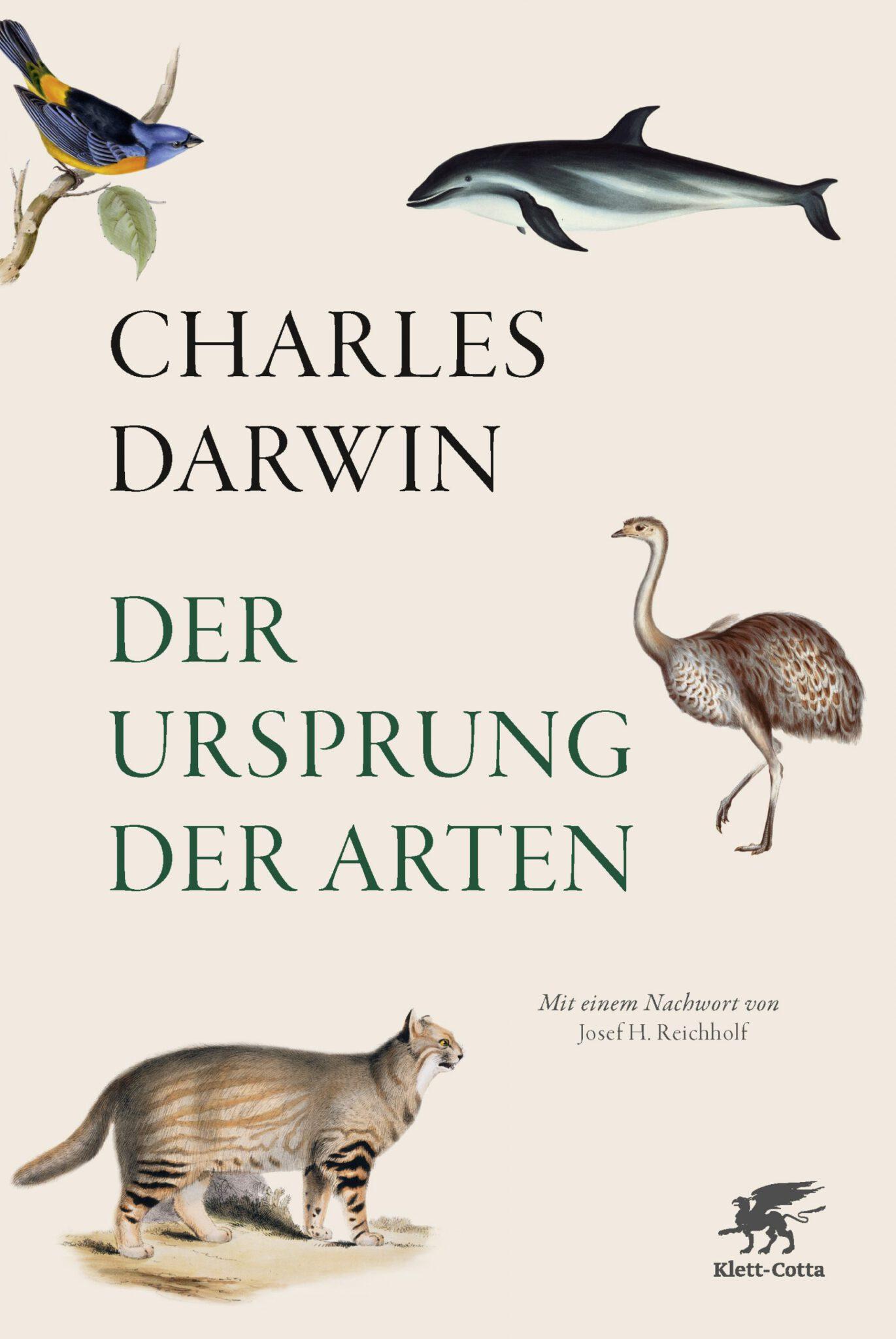 Schuberabbildung - beige mit Tierillustrationen: Raubkatze, Vogel Strauß, Delfin, Vogel