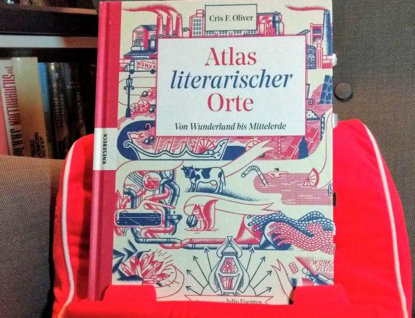 Buch steht auf einem roten Miniplüschsofa vor einem Regal
