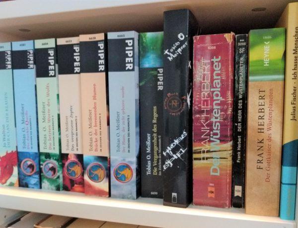 Foto von einem Regalfach mit insgesamt 12 Büchern in verschiedenen Farben
