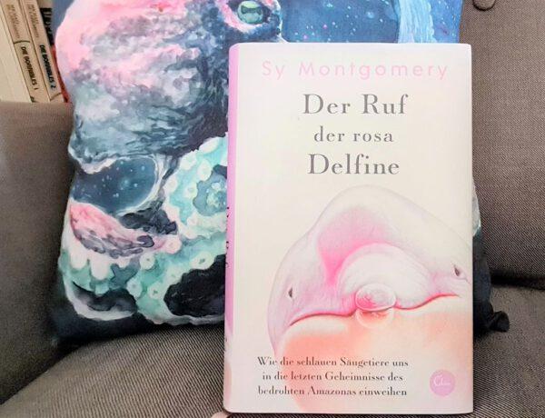 Buch zeigt eine Zeichnung eines Delfinkopfes, dabei liegt das Buch auf einem Kissen mit einem Oktopus